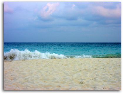 beach sand. each sand in this photo.